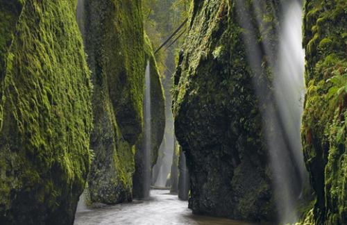 Oneonta-gorge